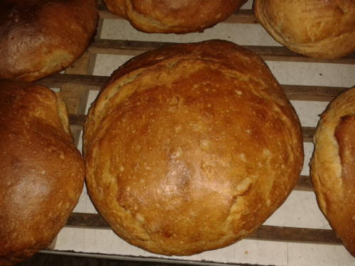 Brotbackaktion am 12.09.2014 -07