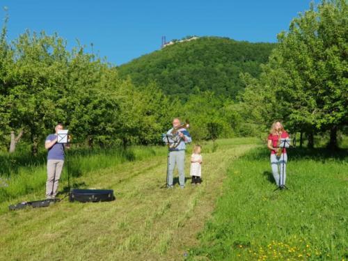 2020-05-10 Musiker fuer Deutschland 10