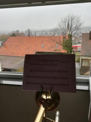 2020-03-29 Musiker fuer Deutschland 15